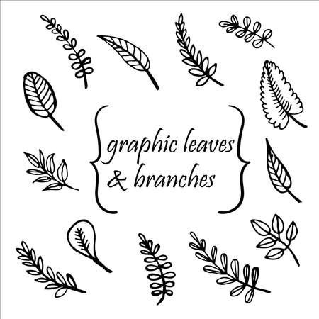 feuilles arbres: les feuilles des arbres et des brindilles dessin�s � la main illustration vectorielle Illustration