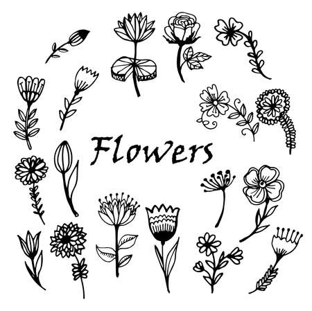 retro floral: hand painted flowers set Doodle Sketch vector illustration