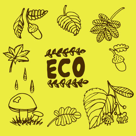 Doodle graphic elements of the autumn in the woods  illustration 向量圖像