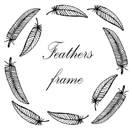 delicate: delicate decorative hand-painted frame with bird feathers vector illustration Illustration