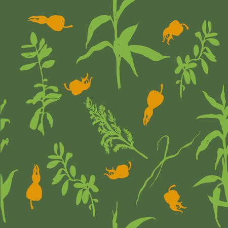 rose hips: forest herbs and rose hips background seamless pattern vector illustration