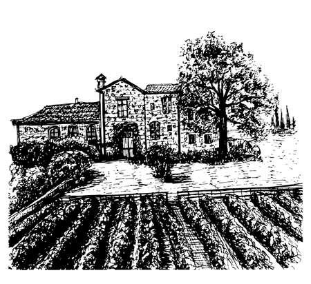 tuscan: landscape vineyards  ink sketch illustration Illustration