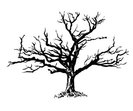 gnarled: drawold sprawling dry tree graphic illustration