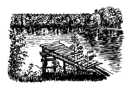 beautiful view of the clear forest lake vector illustration