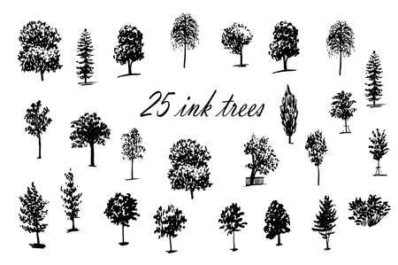 drawing set of 25 trees ink sketch hand-drawn vector illustration