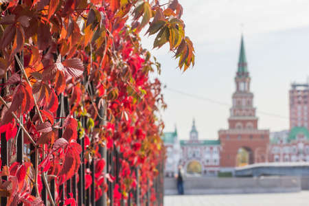 background cityscape view of the bridge tower in the city of Yoshkar-Ola in autumn Stock Photo