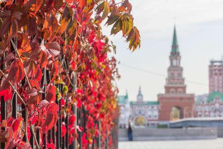 background cityscape view of the bridge tower in the city of Yoshkar-Ola in autumn Foto de archivo