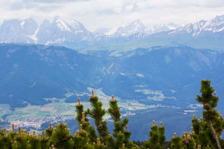 background landscape view of the snowy peaks of the Alps and the tops of the pines from the observation deck of Bolzano, Tyrol, Trentino, Italy Stock Photo
