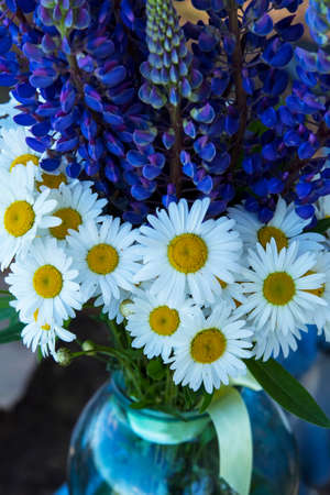 Background blurred landscape, summer bouquet of flowers with daisies and lupines in a glass jar Stock Photo