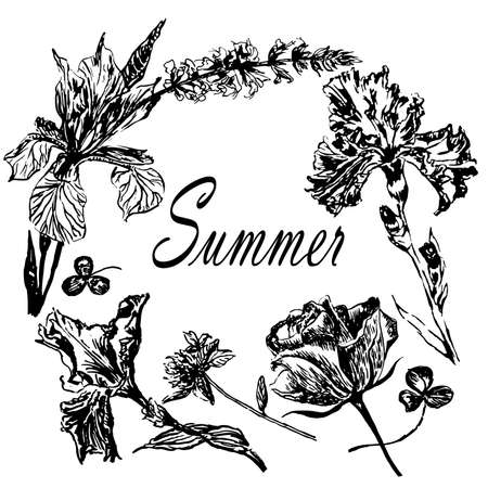 Drawing frame wreath of summer flowers irises and roses and meadow grasses, sketch of hand-drawn graphics ink vector illustration.