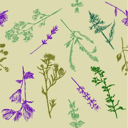 フィールドの草、スケッチ、手描きのグラフィック ベクトル図の図面背景シームレス パターン  イラスト・ベクター素材