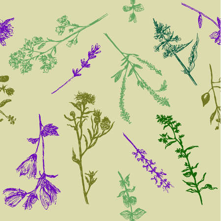 Drawing background seamless pattern of field grasses, sketch, hand-drawn graphics vector illustration