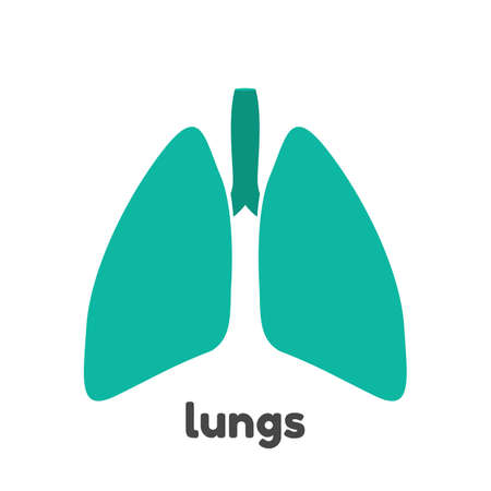 Human lungs design template