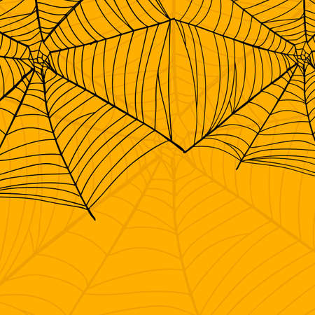 Vector background of spider web for Happy Halloween.