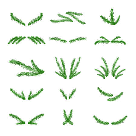 Vector collection of hand drawn christmas tree branches
