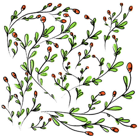 Vector collection of hand drawn wild flowers on white background