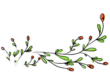 Vector illustration of hand drawn wild flowers for text
