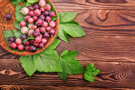 Tasty gooseberries different shades of bright red color with green leaves in a light brown basket. The crate with juicy, ripe and healthful berries on the table.
