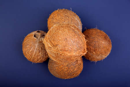 A composition of hawaiian coconuts on a bright blue background. The heap of exotic brown coconuts. Ripe, fresh and appetizing concept. Healthful whole coconuts.