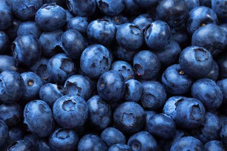 환상적인 블루 베리 배경입니다. 어둡고 포화 된 블루 베리의 매크로 사진. 상쾌한 항 산화 딸기입니다. 건강에 좋은 요구르트와 영양가있는 밀크 쉐이