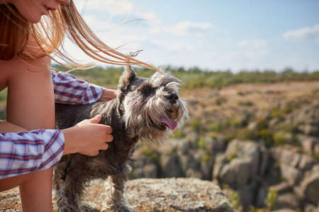 A young girl caressing her dog on a blurred natural background. A little dog in female hands, close-up. Stock Photo