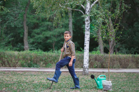 tresure: Little boy on the field with a big shovel looking at the camera planting a tree. Faily autumn day.