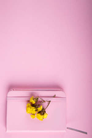 notebook: A close-up of a blue and pink office on a bright pink background. View from above. Blue and pink office. A lot of school objects. Stock Photo