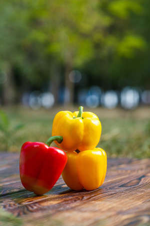 Homemade multi-colored peppers standing side by side on a brown wooden background with a blurred background