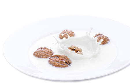 Whole nuts falling in to the ceramic bowl with milk. Milk splashes and walnuts. Isolated photo on a white background. A drop of milk. Frozen time. Horizontal photo