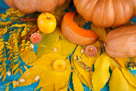 A big tasty autumn pumpkins with leaves on a blue background. Food concept. Stock Photo