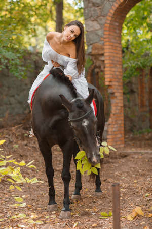 A beautiful girl is sitting on a horse while the horse is eating foliage. Stock Photo