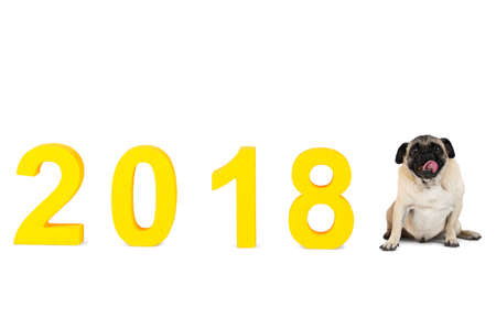 A dog sitting next to the inscription 2018. New Year. Isolated on white background.