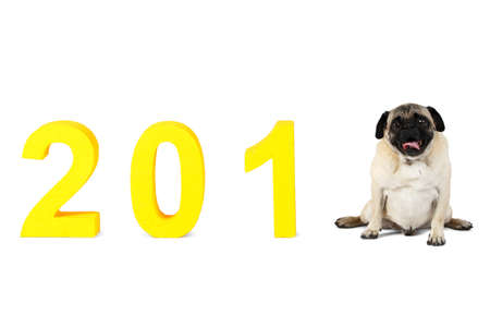 The symbol of this new year is the 2018 dog. New Year. Isolated on white background.