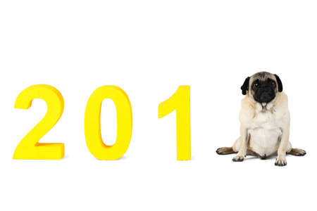 New Year, inscription 2018. The dog symbol of this year sits instead of the last digit. Isolated. Stock Photo
