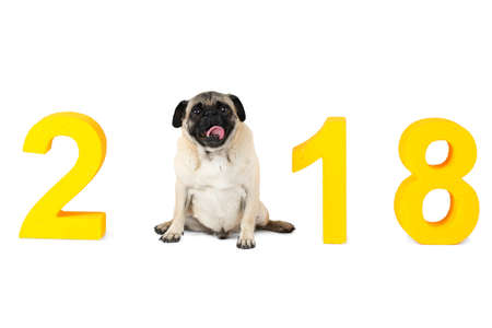 New Years inscription 2018. The dog symbol sits instead of the second digit. Isolated on white background.
