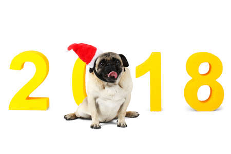 A small dog in santa hat sits on a yellow inscription 2018. Isolation on a white background. Stock Photo