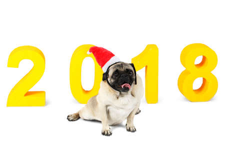A small dog in a santa hat sits on the background of the New Years inscription 2018. Isolated on white background.