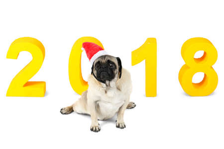 A dog of pug breed in santa hat sits on the background of a New Years yellow inscription 2018. Isolated.