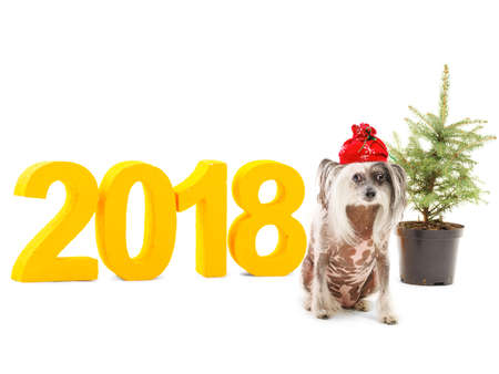 Theme of the New Year. The inscription 2018 near which sits a little dog and stands decorative Christmas tree. Isolated. Stock Photo