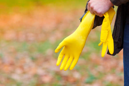 A man in an autumn park, in the open air, puts on rubber, yellow gloves on his hand, to harvest the fallen leaves.