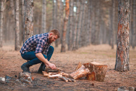 A man in a checkered shirt squats and collects firewood in an forest. Outdoors.