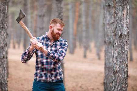 A woodcutter with ginger hair and a beard swings an ax at something. Outdoors.