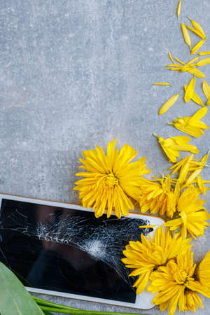Broken touch and stylish phone lies horizontally close-up with yellow flowers with petals on a stone background Stock Photo