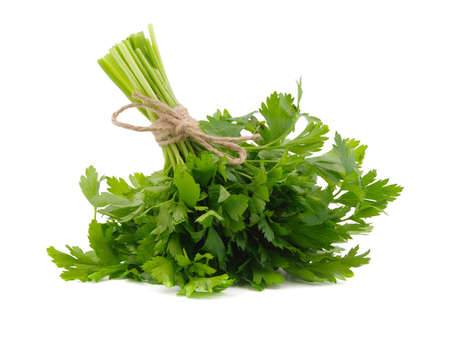 Fresh knotting parsley with thread isolated on white background with copy space. Organic and healthy vegetables. 스톡 콘텐츠