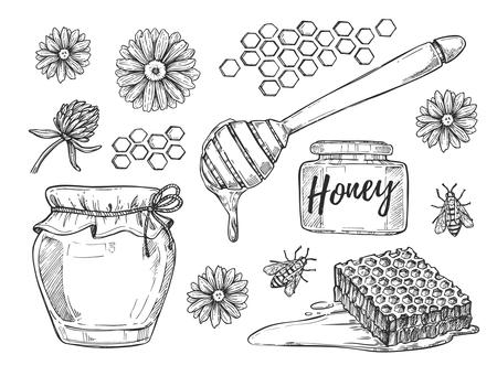 honeyed: Honey making hand drawn illustration set. Honey jar, honey stick, bee, flower and honeycomb sketches isolated on white background.