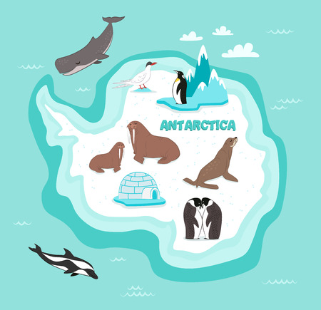 snowbound: Antarctic continent map with wildlife animals vector illustration. Dolphin, sperm whale, emperor penguin, seal, walrus in cartoon style. Antarctic snowbound continent in blue ocean with wild animals