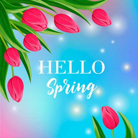 beautyful: Hello spring banner with blooming tulip flower on blurred background vector illustration. Floral decorated spring design for holiday, love celebration concept, nature feast congratulation template