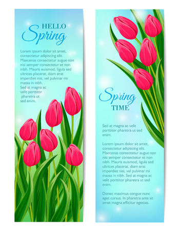 beautyful: Hello spring greeting cards with blooming tulip flower vector illustration. Floral decorated spring design for holiday, love celebration concept with copy space, nature feast congratulation