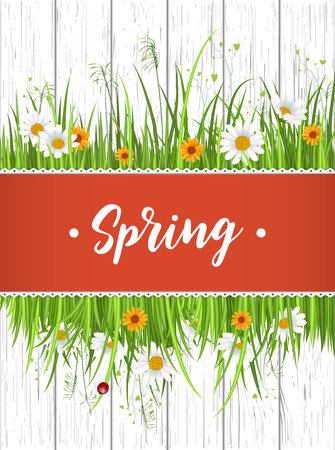 beautyful: Spring banner with blooming chamomile flower and green grass on wooden background vector illustration. Floral decorated spring design for holiday, romantic celebration greeting card template Illustration