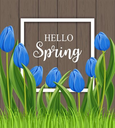beautyful: Hello spring banner with blue blooming tulip flower on wooden background vector illustration. Floral decorated spring design for holiday, seasonal celebration, nature feast congratulation template Illustration